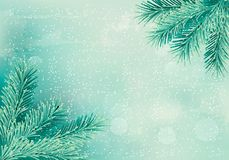 Christmas retro background with christmas tree branches. Stock Photos
