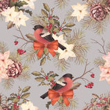 Christmas retro seamless pattern. Bird bullfinch, poinsettia flowers with Rowan and Holly branch on grey background Royalty Free Stock Image