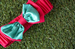 Christmas ribbon on grass Royalty Free Stock Images