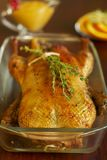 Christmas roast duck Royalty Free Stock Images