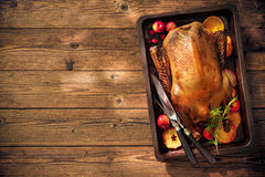 Christmas roast duck with apples and oranges on baking tray Stock Image