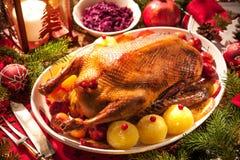 Christmas roast duck Stock Photography