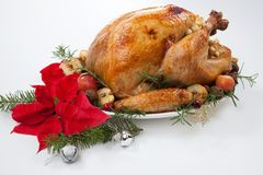 Christmas Roasted Turkey with Grab Apples over white royalty free stock photos
