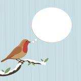 Christmas robin Stock Images