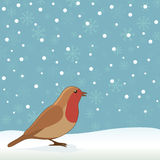 Christmas robin Stock Photography