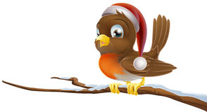 Christmas Robin Royalty Free Stock Images