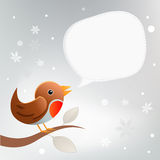 Christmas Robin Twittering Stock Photos