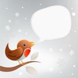 Christmas Robin Twittering Stock Photos