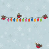 Christmas robins Stock Image