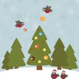 Christmas robins Stock Photography