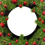 Christmas round background with spruce branches. Stock Photography
