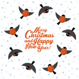 Christmas round dance bullfinches Royalty Free Stock Images
