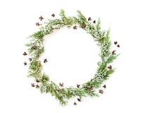 Christmas round frame made of evergreens and cones. Christmas round frame made of winter evergreen plants and natural cones. Flat lay. Top view stock image