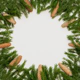 Christmas round frame of winter tree branches with cones on white background. Festive winter background. Christmas round frame of winter tree branches on white royalty free stock photography