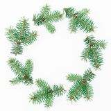 Christmas round frame of winter trees on white background. Flat lay, top view Stock Photography