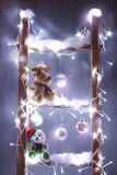 Christmas rudolf and bear Royalty Free Stock Photos