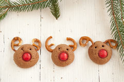 Christmas Rudolf Reindeer Cookies Royalty Free Stock Photo