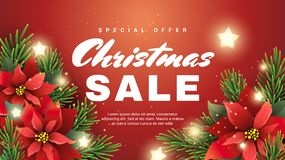 Christmas sale banner with christmas star flower. And fir tree branches on red background Royalty Free Stock Photos