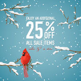 Christmas Sale Banner with Winter Bird Royalty Free Stock Photography