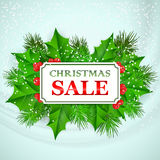 Christmas Sale Card design with holly and fir Stock Image