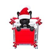 Christmas sale dog Stock Images