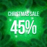 Christmas sale pine-09 Stock Photography