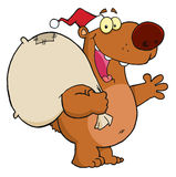 Christmas santa bear Stock Image