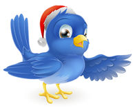 Christmas Santa Hat Pointing Bluebird Royalty Free Stock Photo