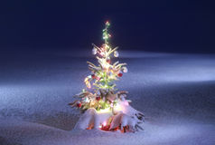 Christmas scenic photo Royalty Free Stock Photo
