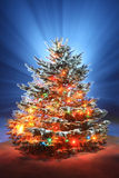 Christmas scenic photo Stock Photo
