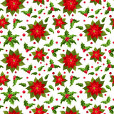 Christmas seamless background with poinsettia and  Royalty Free Stock Photos