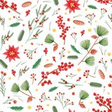 Christmas seamless pattern with holly leaves, poinsettia and mistletoe plants, pine cones and branches on white. Background. Holiday vector illustration in flat stock illustration
