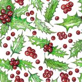 Christmas Seamless Pattern with Holly Leaves and Red Berries Watercolor. Hand Painting Bouquet Botanical Drawing. Illustration with Ilex for Greeting Cards Stock Photo