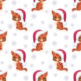 Red Maine coon cat pattern Royalty Free Stock Image