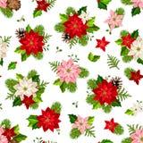 Christmas seamless pattern with poinsettia flowers. Vector illustration. Vector Christmas seamless pattern with red, pink and white poinsettia flowers, fir-tree Royalty Free Stock Photos