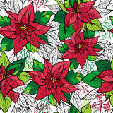 Christmas seamless pattern of poinsettia. With hand drawn lettering. Christmas decoration illustration. Graphic design Stock Images