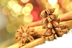 Christmas season, cinnamon sticks, anise stars Stock Photos