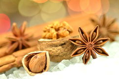 Christmas season, cinnamon sticks, anise stars and walnut Stock Photography