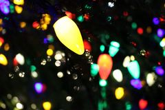 Origin of the tradition of outdoor Christmas lights. `During the 1880 Christmas season, Thomas Edison introduced the first outdoor electric Christmas light royalty free stock image