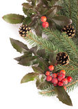 Christmas seasonal border of holly, mistletoe, Stock Photography