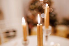 Christmas served table with yellow candles and fir tree at background. Warm lights and beautiful candles fire Stock Image