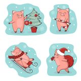 Christmas set of cute little pigs. New Year symbol. Vector winter illustration Royalty Free Stock Images