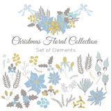 Christmas set of floral elements Royalty Free Stock Images