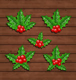 Christmas set holly berry branches on wooden backg Stock Image
