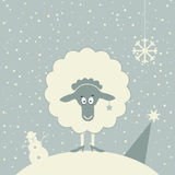 Christmas sheep Stock Photography