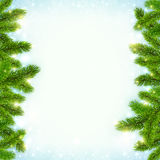 Christmas shining snow background with fir tree Royalty Free Stock Photos