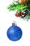 Christmas shiny blue ball on fir branches with decorations  Isol Stock Image