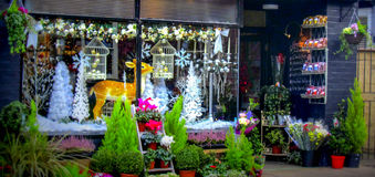 Christmas shop window in Ludlow Royalty Free Stock Photography