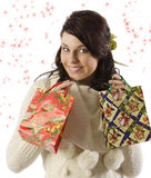 The christmas shopping Stock Photography