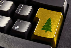 Christmas shopping. Gold computer enter key with green christmas tree symbol Stock Photography